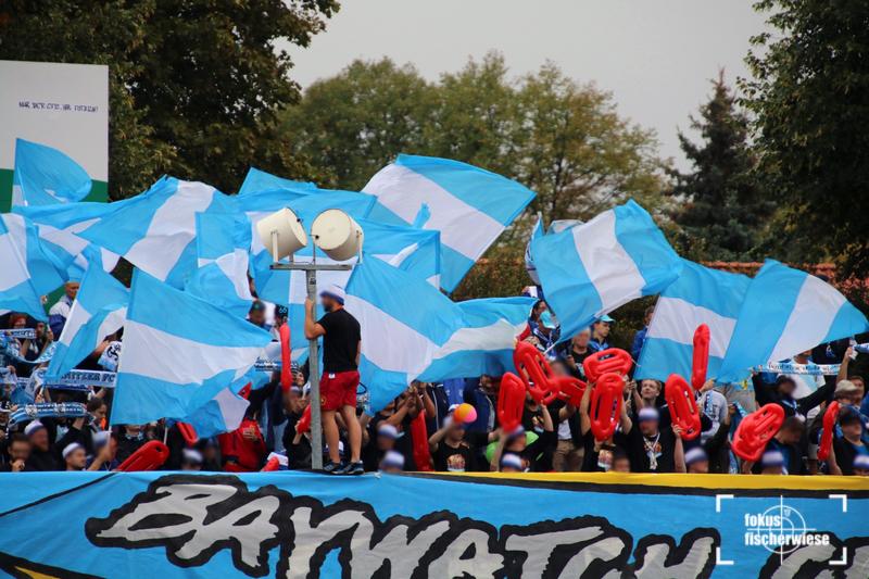 Halberstadt-CFC_5