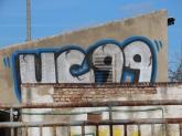 IMG_0550